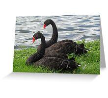 Black swan symmetry Greeting Card