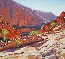 Ormiston Gorge , Central Australia by Graham Gercken