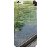 Swamp View iPhone Case/Skin