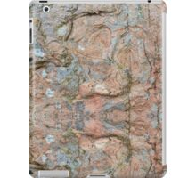 Orkney sandstone and lichen iPad Case/Skin