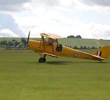 De-Havilland DH82 Tiger Moth by Edward Denyer
