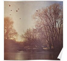 Birds take flight over lake on an early winters morning Poster
