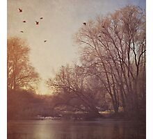 Birds take flight over lake on an early winters morning Photographic Print