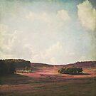 Fields of Heather by Lyn  Randle