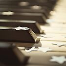 Piano keys and stars by Lyn  Randle