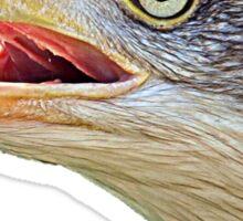 Alaskan Bald Eagle - Tees Sticker
