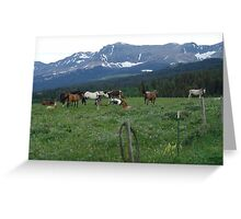 BLACKFOOT HORSE BAND - NEAR BROWNING, MT Greeting Card