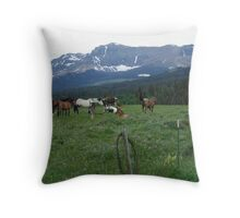 BLACKFOOT HORSE BAND - NEAR BROWNING, MT Throw Pillow