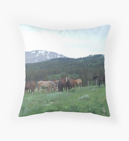 THE BLACKFOOT BAND AND THE SORREL STUD - Near Browning, MT Throw Pillow