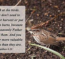 Matthew 6:26 by Deborah McLain
