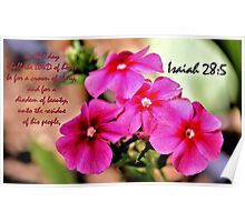 The Beauty of the Lord - Daily Homework - Day 70 - July 17, 2012 Poster