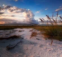 morning oats by james smith