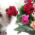 Nala loves flowers too by ZeeZeeshots