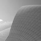 Sydney Opera House by Kim Jackman