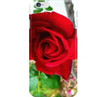 Red_Rose iPhone Case/Skin