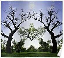 Fractals in the Trees Poster