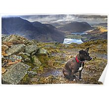 The HDR Terrier....Fleetwith Pike Poster