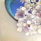 Hydrangeas in blue bowl by Lyn  Randle