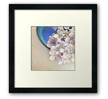 Hydrangeas in blue bowl Framed Print