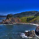 Coastal Beauty by Chris Ferrell