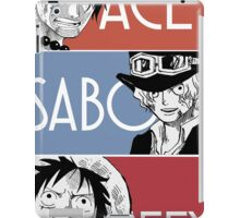 ASL - Ace Sabo Luffy - Brothers  iPad Case/Skin