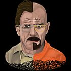 The Two Faces of Walter White by rubynibur