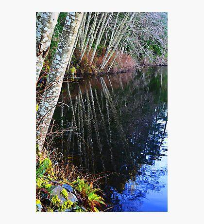 Lake Reflection Photographic Print