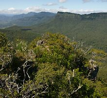 Mountainous Scenic Rim. Southeast Queensland. by Ian Hallmond