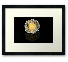 Golden Gooseberry on Black Framed Print