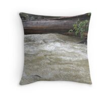 After effects of storm Throw Pillow