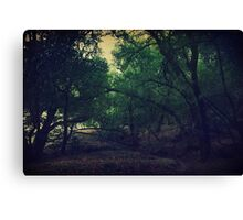 A Darker Kind of Fairytale Canvas Print