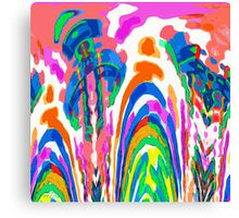 The Color Fountain Canvas Print