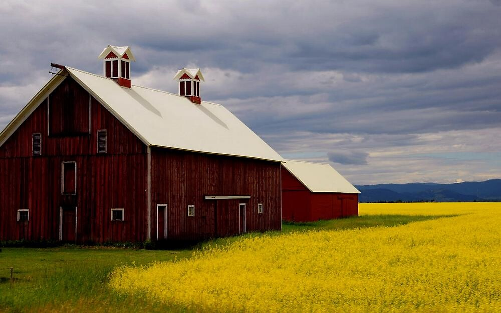 THE RED BARN by RoseMarie747