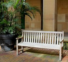 park bench by Terry Rodger Smith