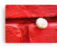 Snug Snail Sticking Out Canvas Print