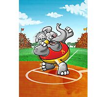 Olympic Shot Put Elephant Photographic Print