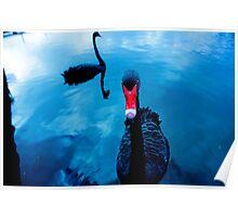 Swan Song Ltd Poster