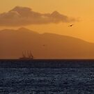 Sailing at Dawn by Themis