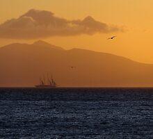 Sailing at Dawn by Themis