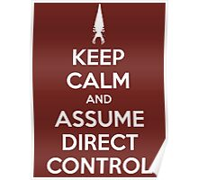 Keep Calm and Assume Direct Control Poster