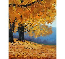 Golden Fall Trees Photographic Print