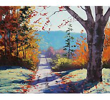 Autumn road Painting Photographic Print