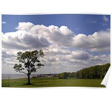 """Lone Tree - Sewerby Heads"" Poster"