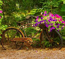 The Bike Stops Here - Niagara by Marilyn Cornwell