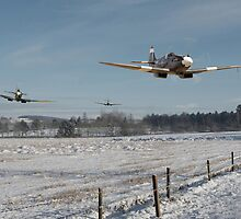 Spitfire - Hedge Hopping by Pat Speirs
