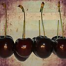 Cherries by RosiLorz
