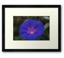 Vibrant Blue Framed Print