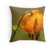 Look Before Landing Throw Pillow