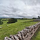 A Wiltshire View by KarenM
