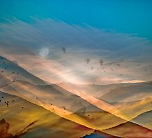Valley of Confusion by Mark Wade